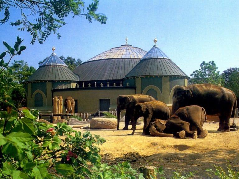 حديقة الحيوانات هيلابرون اماكن سياحية في ميونخ