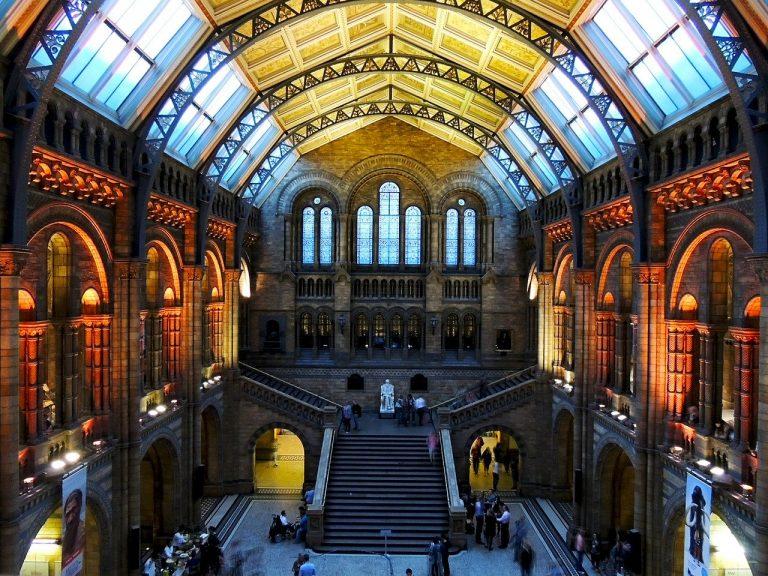متحف التاريخ الطبيعي Natural History Museum - اماكن سياحية في لندن
