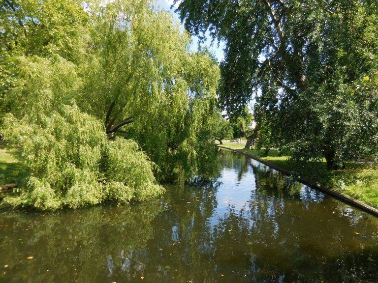 حديقة الريجنت Regent park - اماكن سياحية في لندن
